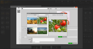 MailStyler Nyhetsbrev Designer - Bildbiblioteket