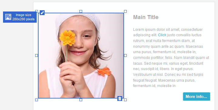 The Image selection frame