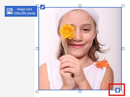 The image delete button